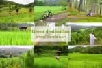 Green  destination เที่ยวอำเภอกัลยาณิวัฒนา