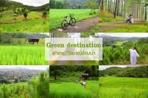 <b>Green  destination เที่ยวอำเภอกัลยาณิวัฒนา</b>