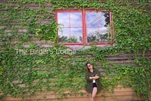 <b>The Birder's Lodge Café  เขาใหญ่</b>