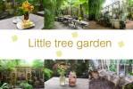 Little tree garden  คาเฟ่ท่ามกลางสวนสวย