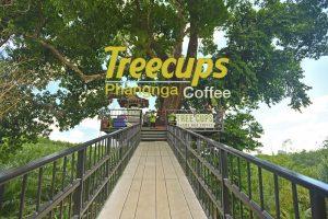 <b>Tree Cups Phangnga Coffee ร้านกาแฟบนต้นไม้ พังงา</b>