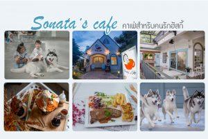 <b>Sonata's café  คาเฟ่น่ารักสำหรับคนรักฮัสกี้</b>