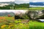 10 ความลับแห่งสีเขียวและสายหมอกในฤดูฝน