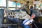 สนุก ตื่นเต้น ชมสัตว์แบบใกล้ชิด สวนสัตว์เปิดกาญจนบุรี