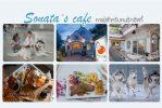 Sonata's café  คาเฟ่น่ารักสำหรับคนรักฮัสกี้