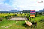 บ้านภูตะวัน เมืองคอง
