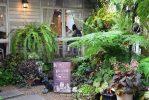 Portobello & Desire คาเฟ่กลางสวนสไตล์อังกฤษ