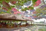 Tree & Tide Riverside Cafe นครปฐม