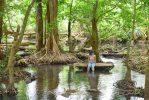 โฉ สวนน้ำธรรมชาติ
