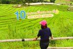 10 จุดแวะเที่ยว เส้นทางสายกรีน  ฮอด แม่สะเรียง แม่ลาน้อย