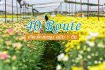 40 เส้นทางเที่ยวใกล้กรุง ฉบับ 1 วัน