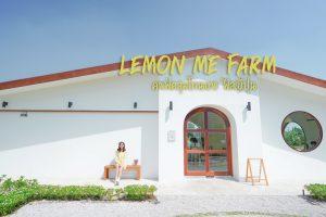 <b>Lemon Me Farm & Cafe  คาเฟ่มินิมอลสไตล์ญี่ปุ่น</b>